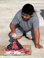 STUDENTS MAKE VOLCANOES ERUPT!